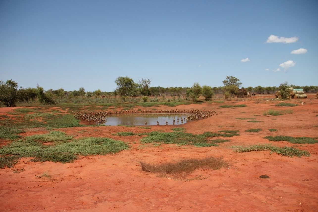 EEI's Stormwater Management Plan For Roebuck Export Depot Broome